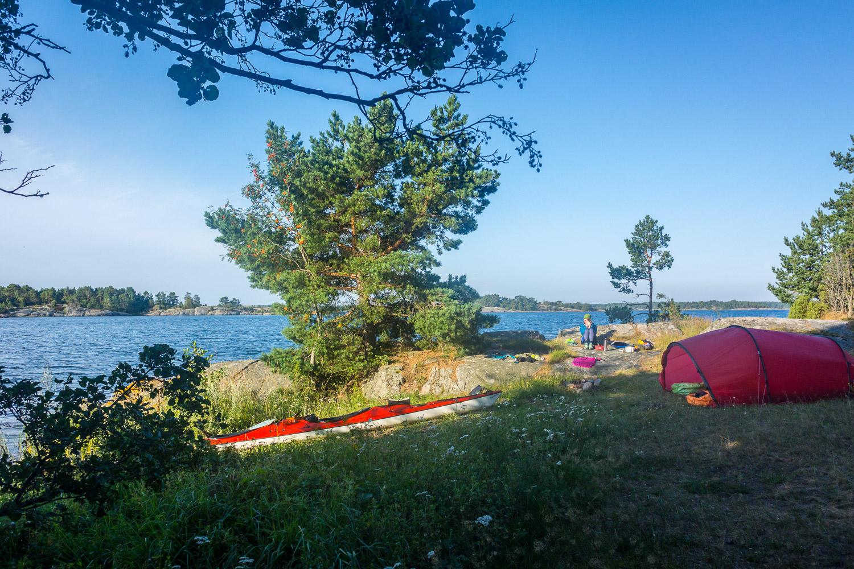 Finfin morgon på Ekös sydsida