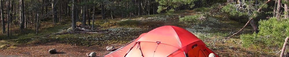 Skyddat bland tallarna på Lilla Vippholmen