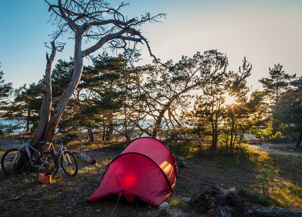Gott om fina tältplaster i lä bakom gles tallskog eller vid vattnet om det blåser mindre