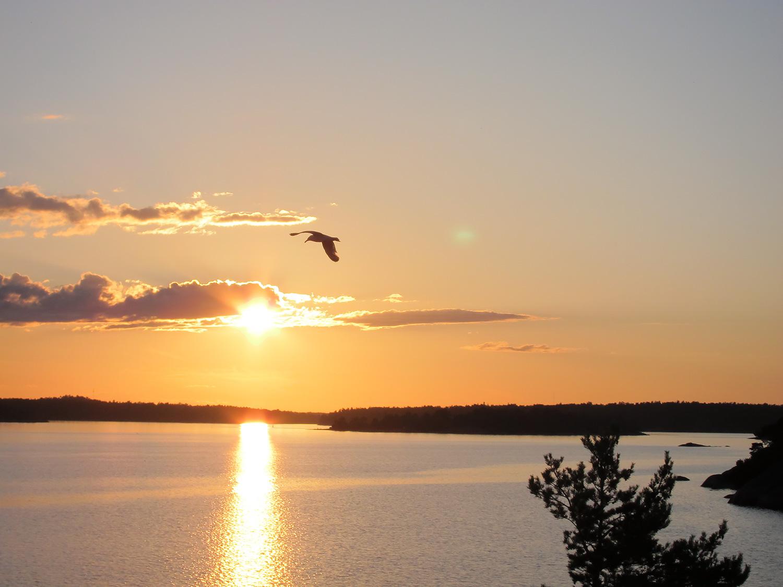 Solnedgång sedd från toppen av den Västra Berktullen